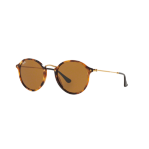 ray-ban-round-fleck-sunglasses-0RB2447__1160_030A